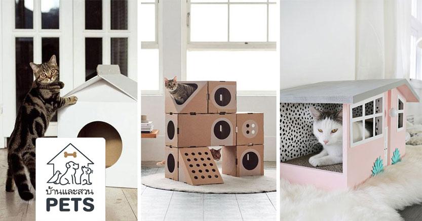 ไอเดียกล่องแมวจากกล่องกระดาษลัง ใช้วัสดุง่ายๆ แต่น่ารักมาก