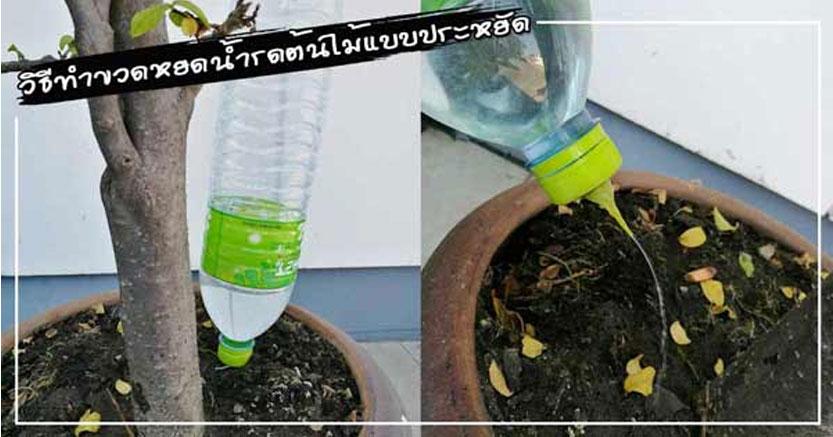 วิธีทำขวดหยดน้ำรดต้นไม้แบบประหยัด ทำง่าย ๆ ไม่ต้องลงทุนเยอะ
